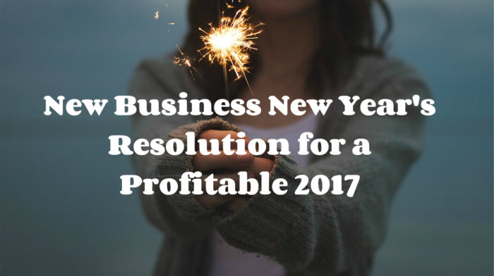 New Business New Year's Resolution for a Profitable 2017
